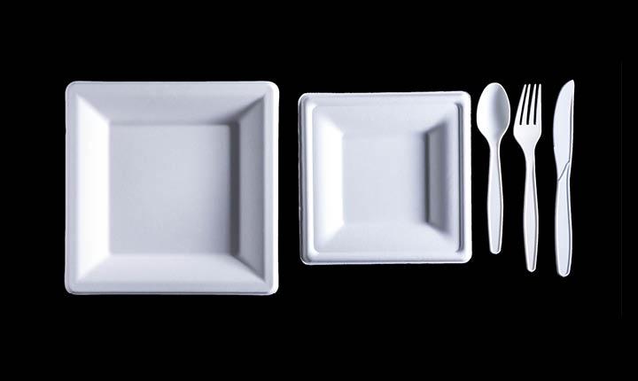 כלים חד פעמיים להשלמת האירוח